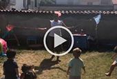I Video del Micronido